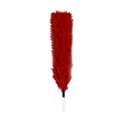 Coldstream Guards, Officers - Red Feather Plume / Hackle - British Army