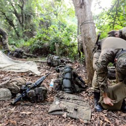Members of Y Company The Royal Regiment of Fusiliers conducting jungle warfare training in Brunei.